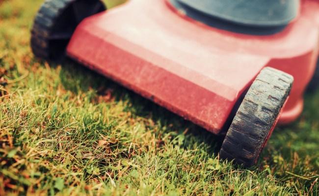 push lawn mower cutting grass