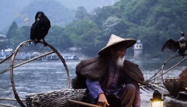 using birds to fish