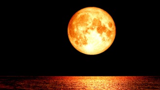 Friday's Blood Moon Means The End Of The World Is Coming, According To Experts, So Nice Knowing You