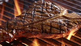 Call This Free Hotline For Grilling Advice From America's Top Grill Masters So Your July 4th BBQ Doesn't Suck