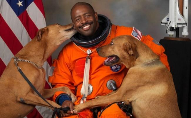 astronaut_dogs