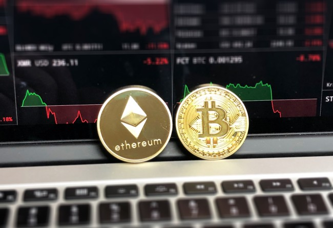crypto hedge funds losses