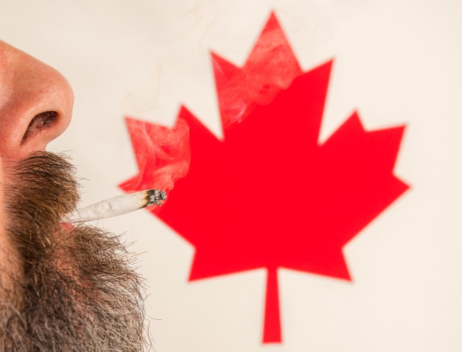 Can You Bring Weed From Canada Into The US?