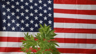 There Is A Plan In Place To Legalize Marijuana Nationwide, But Of Course There Is A Catch