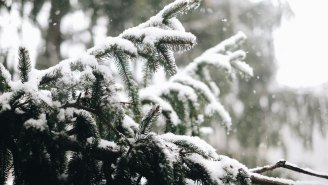 The Farmer's Almanac Winter 2019 Predictions Are Here And A Lot Of People Are In For The Bitter Cold