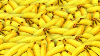 Someone Was Nice Enough To Donate Boxes Of Bananas To A Prison That Were Also Filled With $17 Million Worth Of Cocaine