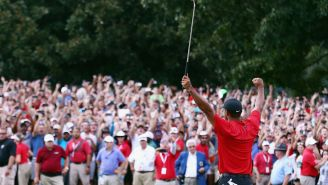 So. Many. People. Tuned In To Watch Tiger Woods' First Tour Championship Win Since 2013