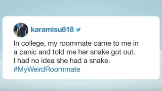 People Shared Horror Stories Of Their Weird Ass Roommates And I Hope None Of These Are About You