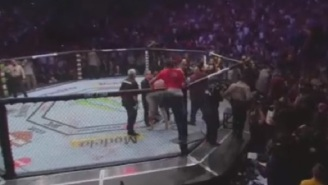 Man From Khabib Nurmagedov's Team Jumped Into Octagon And Punched Conor McGregor In The Back Of The Head At UFC 229