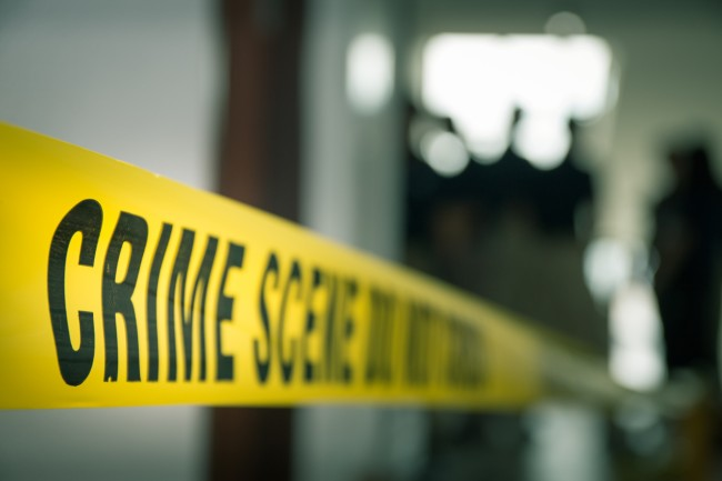 America Serial Killer Stats