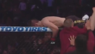 UFC 229 Descends Into Chaos After Khabib Nurmagedov Jumps Into Crowd To Fight One Of Conor McGregor's Trainer