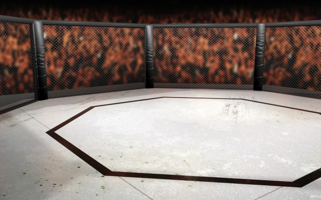 why is the ufc cage an octagon