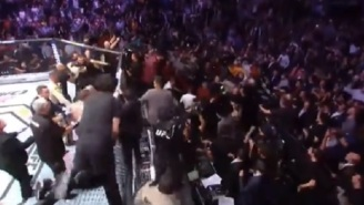 UFC Fighter Zubaira Tukhugov Brags About Jumping Into Cage And Punching Conor McGregor During UFC 229 Brawl