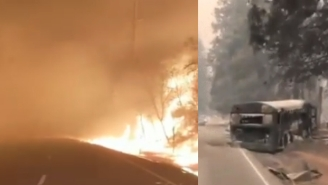 Unreal Videos Of People Escaping California's Camp Fires Look Like A Post-Apocalyptic Movie – Wildfire Updates