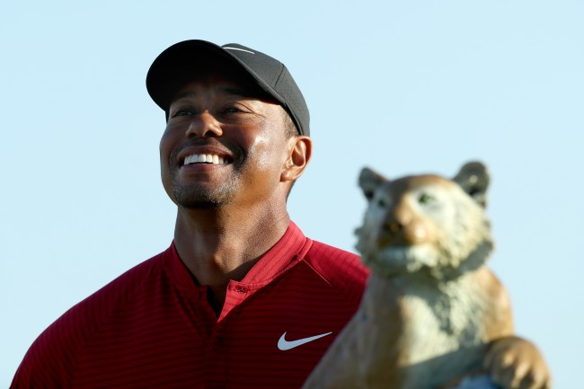 Tiger Woods popstroke mini golf
