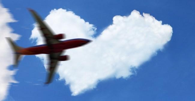 Human Heart Was Accidentally Left Onboard A Southwest Flight
