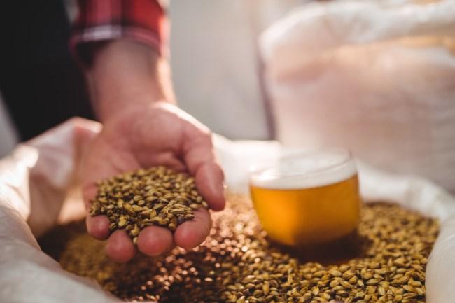 why should i homebrew beer