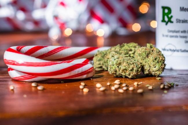 Giving Marijuana For Christmas