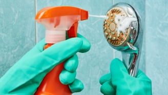 Here's The Disgusting Reasons Why You Need To Clean Your Showerhead, Like Right F*cking Now!