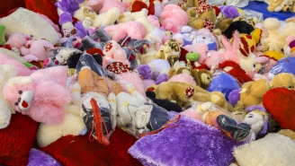 Hershey Bears Fans Set Record By Throwing 34,798 Stuffed Animals On The Ice Creating A Literal Sea Of Toys