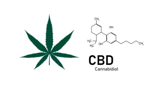 Will CBD Cause You To Fail A Drug Test?