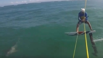 Kite Surfer Traveling At High Speeds Goes Airborne After He Collides With A GODDAMN SHARK