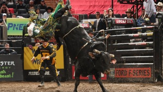 PBR Shifting Towards Extreme Sports Audience, Younger Demographic