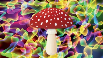 Top Neuroscientist Is Very Optimistic Magic Mushrooms And MDMA Will Become Approved Treatments