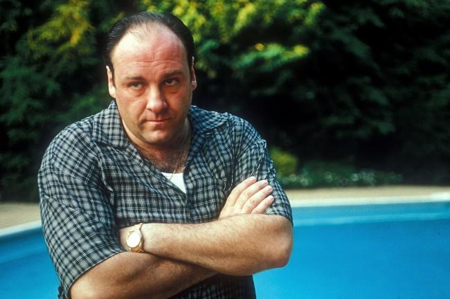 SOPRANOS Tony Soprano Movie Son