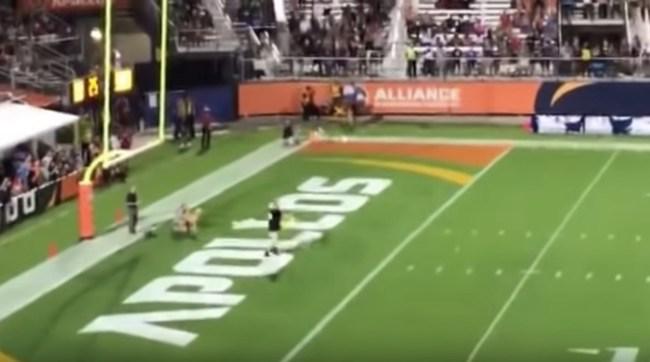 dog catches 83-yard frisbee AAF Orlando game
