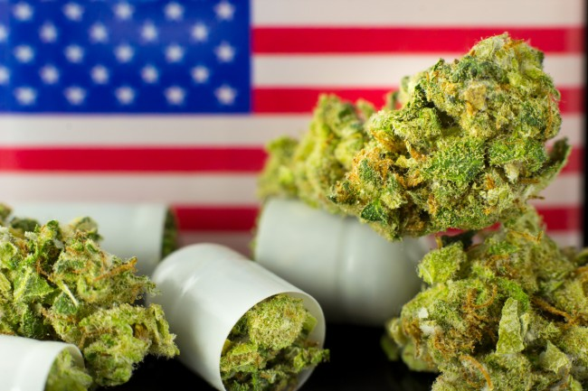 When Will Weed Be Legal In US?