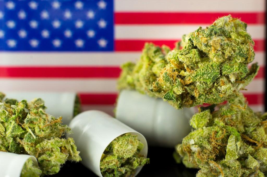 marijuana and American flag