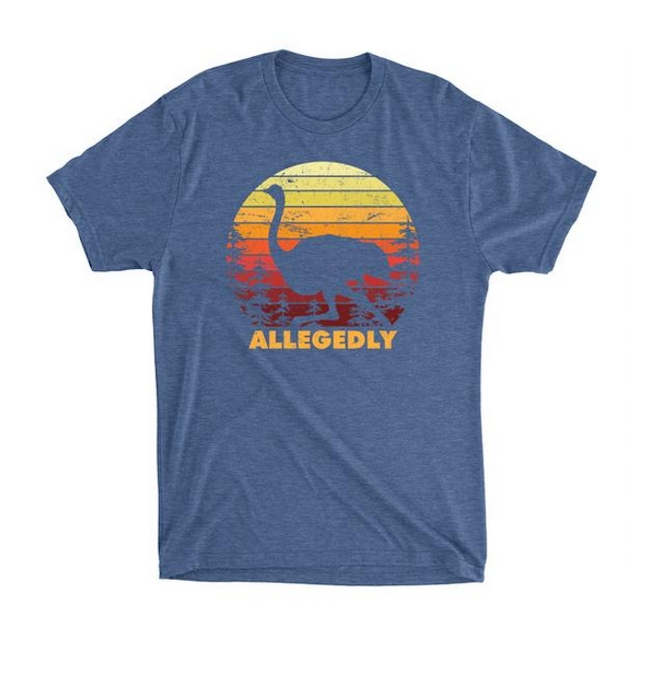 Allegedly Triblend Tee