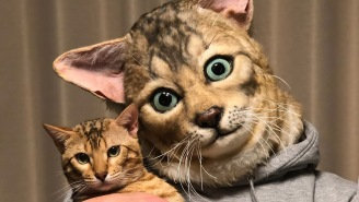 Nightmare Fuel: A Japanese Company Will Make A Disturbingly Realistic Mask Of Your Pet's Face