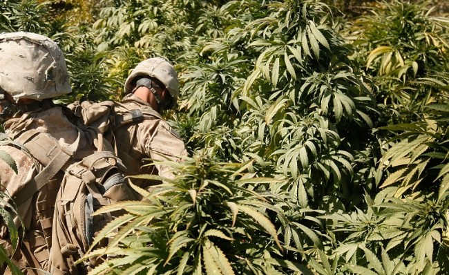 US Marine Veteran Accused Of Running Drug Empire with Pipeline into US