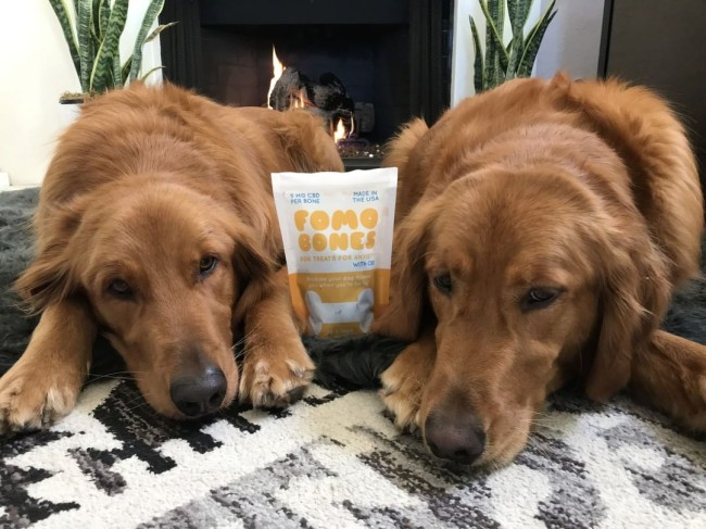 fomo bones cbd dog treats