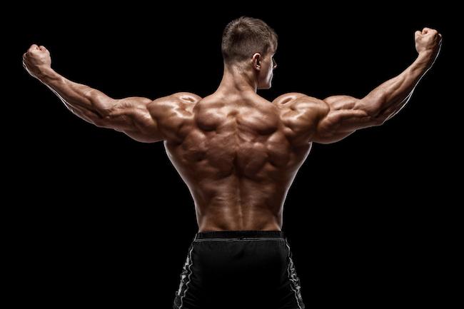 Shoulder Exercises Get Bigger