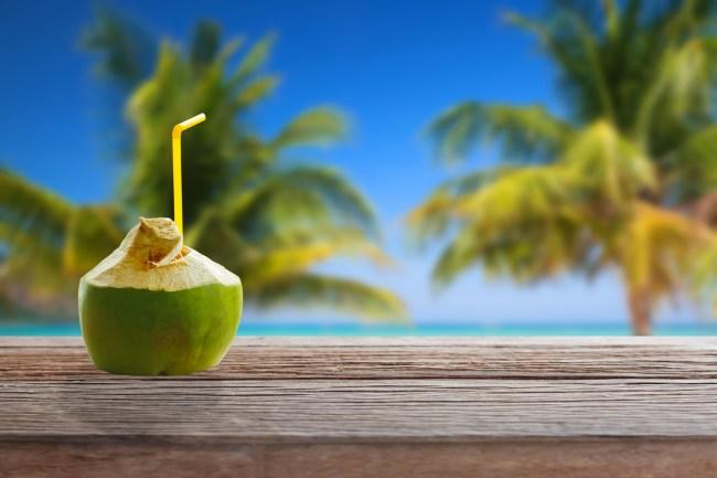 coconut water company social media