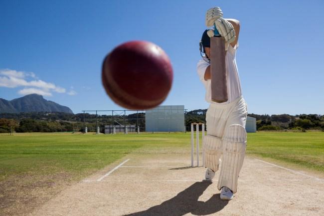 Cricket sport ball and bat