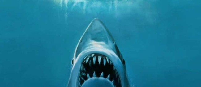 cage diver captures real life great white shark copying iconic jaws movie poster