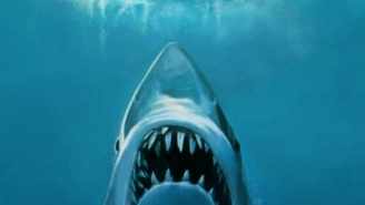 Cage Diver Captures Terrifying Photo Of Great White Shark That Is Stunning Replica Of Iconic 'Jaws' Movie Poster