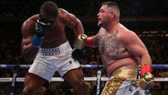 Andy Ruiz Jr.'s Family Made A Boatload Of Money By Betting On Him To Beat Anthony Joshua
