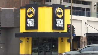 Rat Fell From The Ceiling And Landed On Customer's Table At A Buffalo Wild Wings
