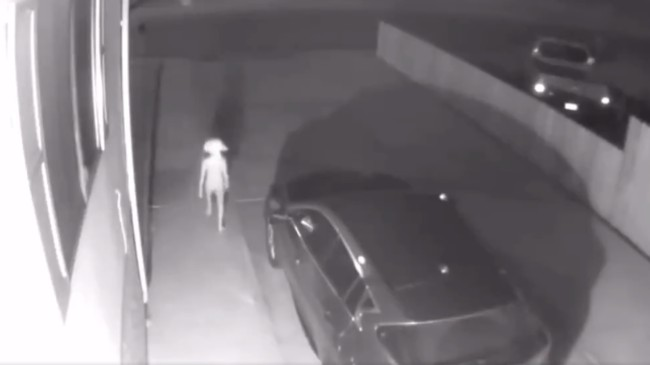 Dobby the House Elf from Harry Potter seen on security camera video goes viral on Twitter