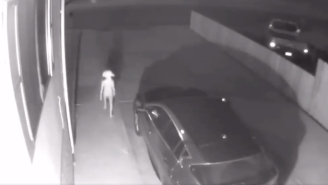 Creepy Video Goes Viral On Twitter And Everyone Is Convinced Shadowy Figure Is Dobby The House Elf From 'Harry Potter'