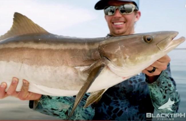 drone fishing cobia Blacktiph