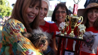 The 'World's Ugliest Dog' Has Been Crowned And He Looks Like The Drug Dealer Who Never Left My Hometown