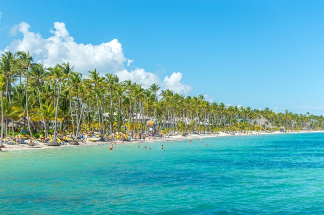 Group of Jimmy Buffett fans known as Parrotheads got violently sick while staying at a Dominican Republic resort Hotel Riu Palace Macao.