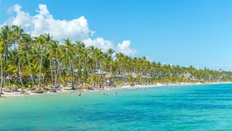 47 Jimmy Buffett Fans Get Violently Sick On Vacation In Dominican Republic, One Parrothead Loses 14 Pounds