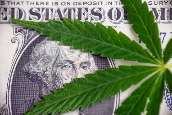marijuana industry cannabis dollar